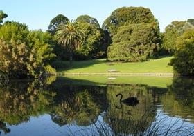 melbourne garden